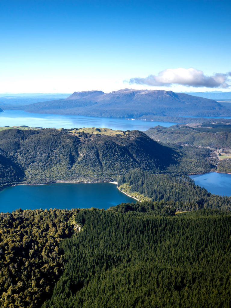 Best Scenic Flights Rotorua - Volcanic Air