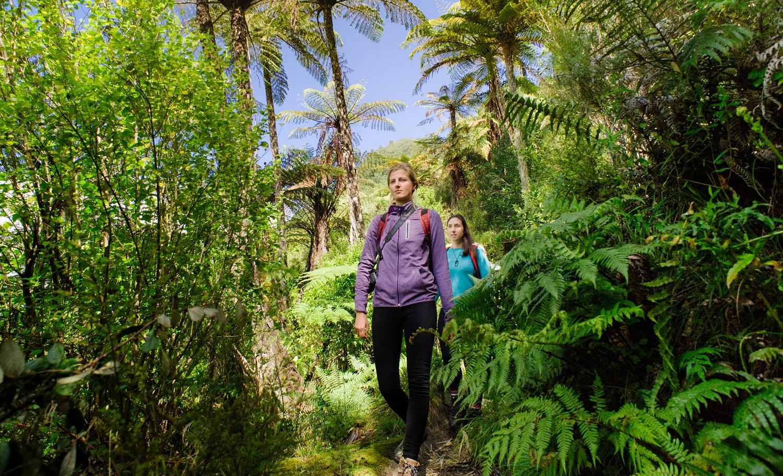 Tarawera Falls Heli Hike
